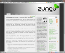 zungu - Screenshot 12. Juli 2007
